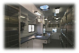 Animal Shelter Vehicles Interior